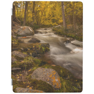 Autumn colors on Crestone Creek iPad Cover