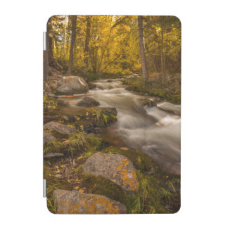 Autumn colors on Crestone Creek iPad Mini Cover