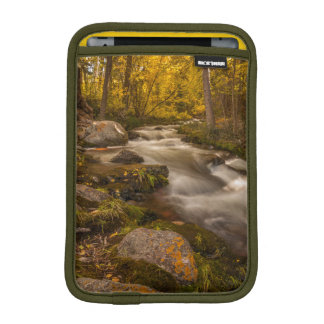 Autumn colors on Crestone Creek iPad Mini Sleeve