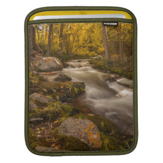 Autumn colors on Crestone Creek iPad Sleeve