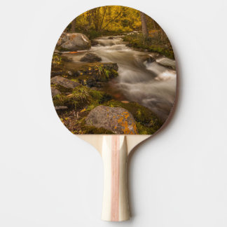 Autumn colors on Crestone Creek Ping Pong Paddle