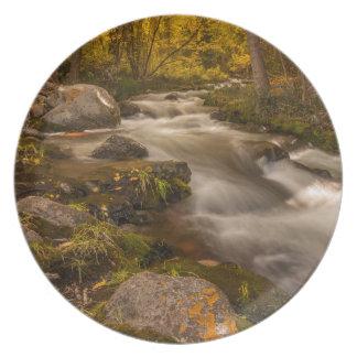 Autumn colors on Crestone Creek Plate