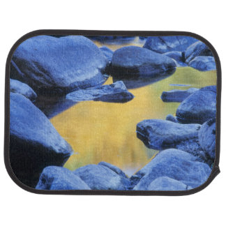 Autumn colors reflected in a wading pool, car mat