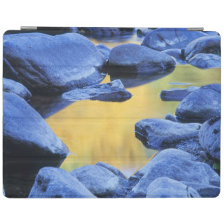 Autumn colors reflected in a wading pool, iPad cover