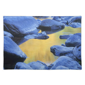 Autumn colors reflected in a wading pool, placemat