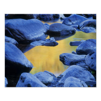Autumn colors reflected in a wading pool, poster