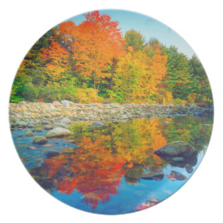 Autumn Colors reflecting in a stream in Vermont Plate