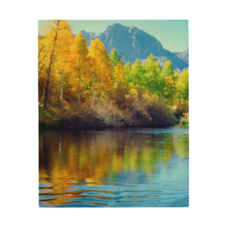 Autumn colors reflecting in Rush Creek Wood Wall Decor