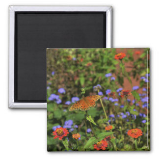 Autumn Colors Square Magnet