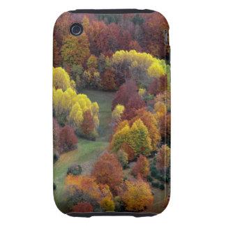 Autumn Colors Tough iPhone 3 Cases