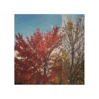 Autumn colors wood wall art