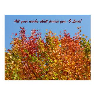 Autumn colours 4 postcard