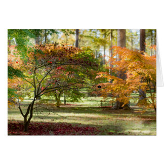 Autumn Colours Collection Card