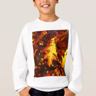 Autumn colours sweatshirt