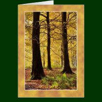 Autumn Colours woodland scene Card