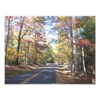 Autumn Country Road Photograph