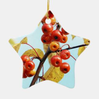 Autumn crab apples ceramic star decoration