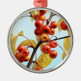 Autumn crab apples Silver-Colored round decoration