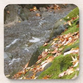 autumn creek Zaz jpg Drink Coaster