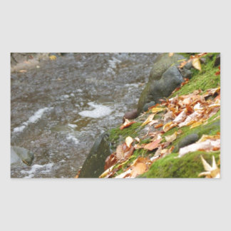 autumn creek Zaz.jpg Rectangular Sticker