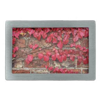 Autumn creepers rectangular belt buckle