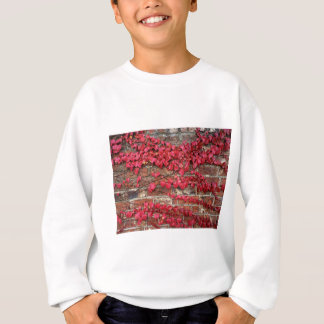 Autumn creepers sweatshirt