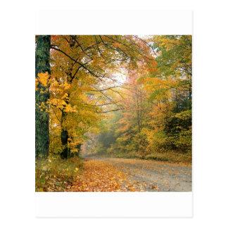 Autumn Crisp Afternoon Vermont Postcard
