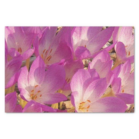 Autumn Crocuses Floral Tissue Paper