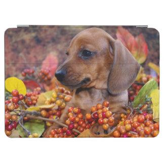 Autumn Dachshund Puppy iPad Air Cover