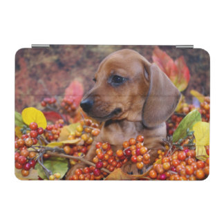 Autumn Dachshund Puppy iPad Mini Cover