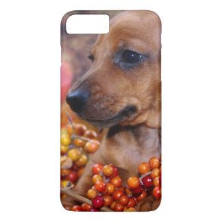 Autumn Dachshund Puppy iPhone 8 Plus/7 Plus Case