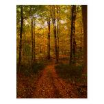 Autumn Day Post Card