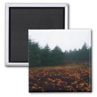 Autumn Days Magnet