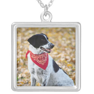 Autumn Dog Silver Plated Necklace