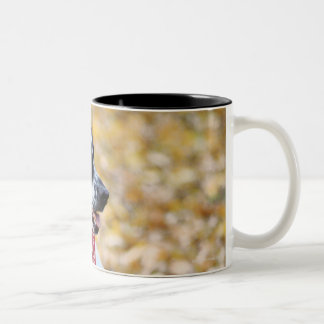 Autumn Dog Two-Tone Coffee Mug