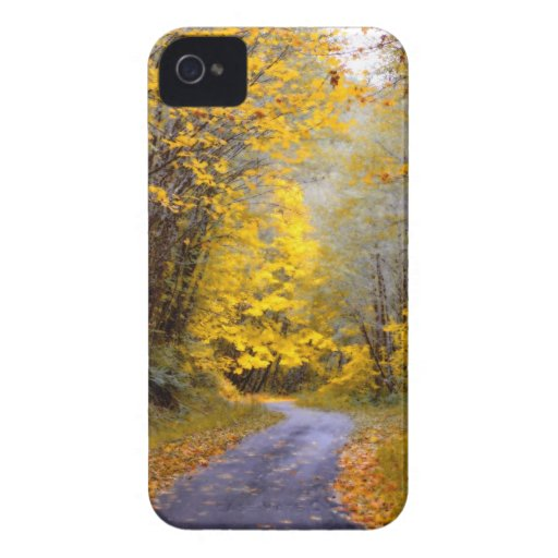 Autumn Drive iPhone 4 Cover