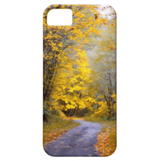 Autumn Drive iPhone 5 Cover
