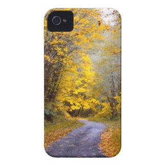Autumn Drive iPhone 4 Case-Mate Case