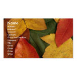 Autumn Ecstacy Double-Sided Standard Business Cards (Pack Of 100)
