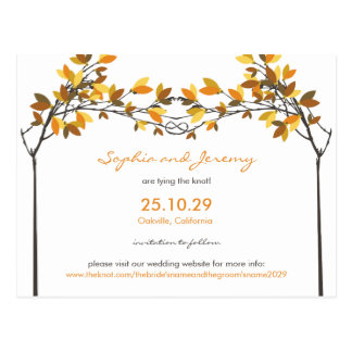 Autumn Fall Knotted Love Trees Save The Date Photo Postcard