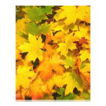 Autumn Fall Leaves Flyer