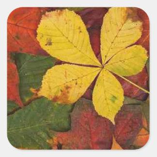 Autumn fall leaves green yellow orange square sticker
