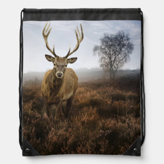Autumn Fall with beautiful red deer stag Drawstring Bag