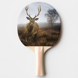 Autumn Fall with beautiful red deer stag Ping Pong Paddle