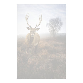 Autumn Fall with beautiful red deer stag Stationery