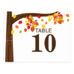 Autumn Falling Leaves Table Number Card Post Card