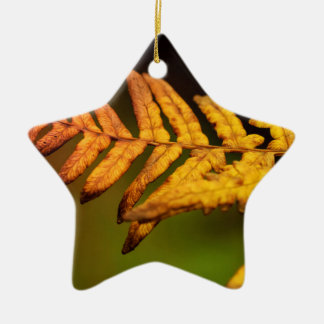 Autumn Fern Art Christmas Ornament