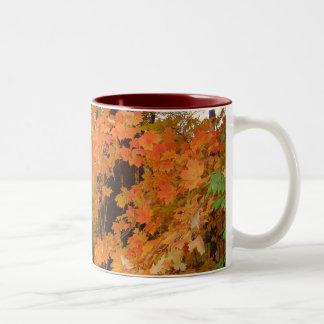 Autumn Fire Coffee Mugs