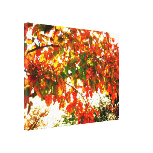 'Autumn Fire' Wrapped Canvas Print