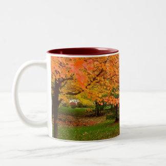 Autumn Flames Coffee Mugs
